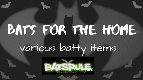 Bats for the Home