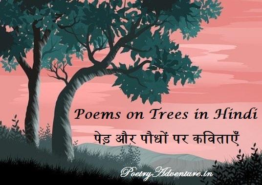 Poem on Trees in Hindi, Pedon Par Kavita, Vriksh Par Kavita, Importance of Trees Par Kavita, पेड़ और पौधों पर कविता, वृक्ष पर कविता