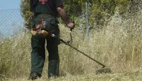 Περιοχές Ναυπλίου: Επαγγελματίας αναλαμβάνει τη κοπή χόρτων