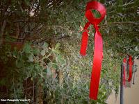 http://ilioupoli-athens.blogspot.gr/2016/12/blog-post_5.html