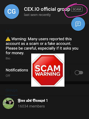 Scammer being flagged by Telegram