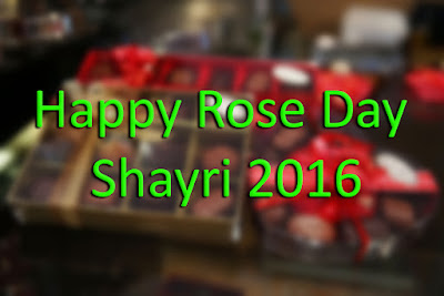 Happy Rose Day Shayri 2016