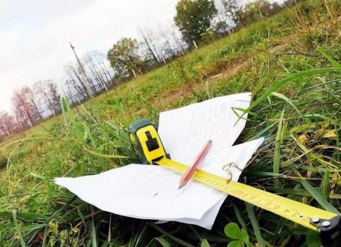 Безкоштовна земля для кожного українця: як отримати свої 2 гектари