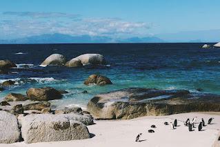 South Africa Mauritius Honeymoon