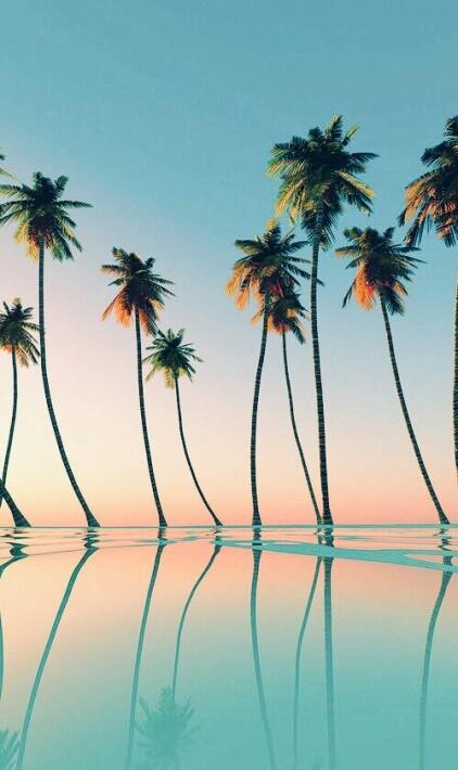 estate-tropici