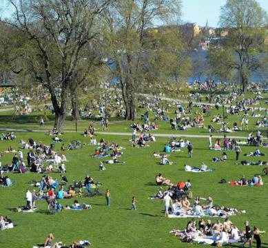 extrem ledsagare klädespersedlar i Stockholm
