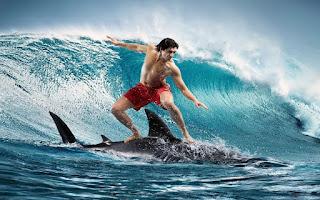 köpek balığı üstünde sörf yapan adam arkaplanı muhteşem bişi