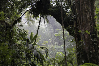 Hochland Costa Rica
