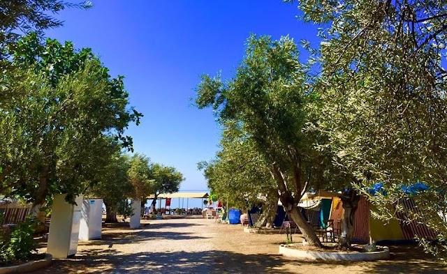 Ali Baba Camping