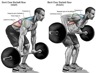 Top 5 Exercises To Build Wide Muscular Back, Bent Over Rows