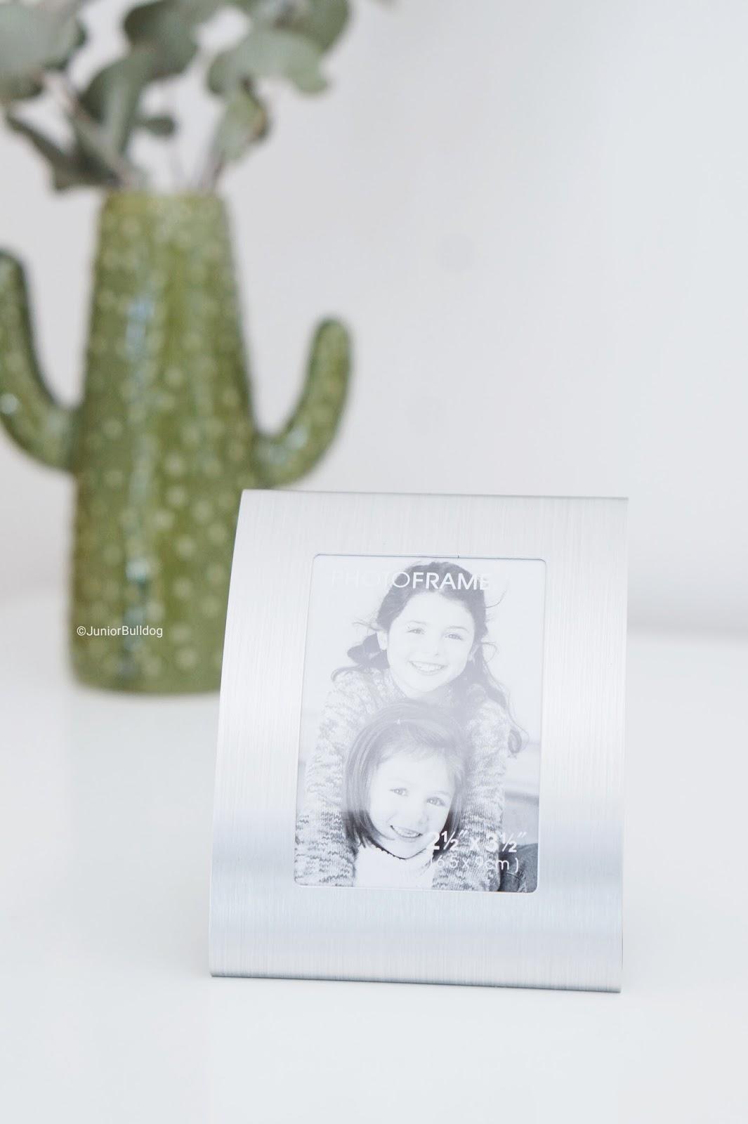 cadre photo vase cactus
