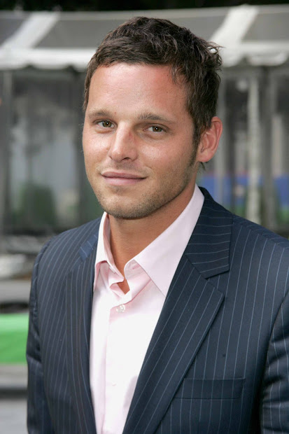 Justin Chambers Tv Series Posters And Cast