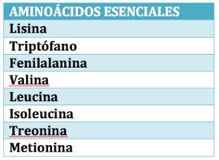 lista de aminoácidos esenciales