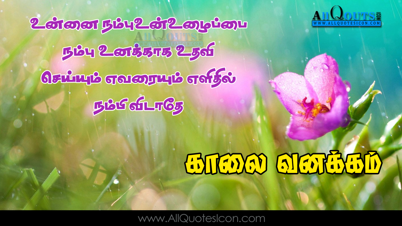 Happy Wednesday Images Top Tamil Good Morning Kavithaigal Pictures For Friends Www Allquotesicon Com Telugu Quotes Tamil Quotes Hindi Quotes English Quotes