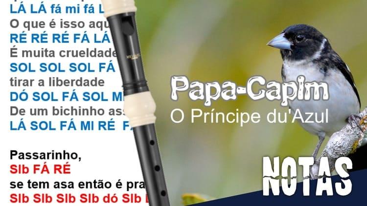 Papa-Capim - O Príncipe du'Azul - Cifra melódica