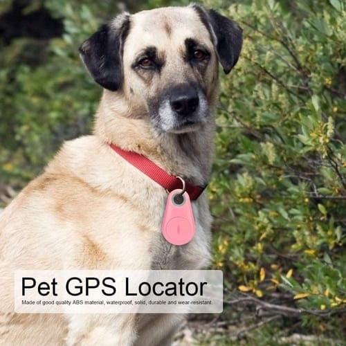 Review YOUTHINK Pet GPS Tracker for Dogs