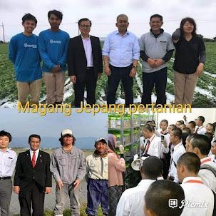 Daftar perusahaan penerima dijepang bidang agrobisnis pertanian