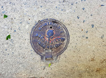 Manhole cover with Pomegranate motif