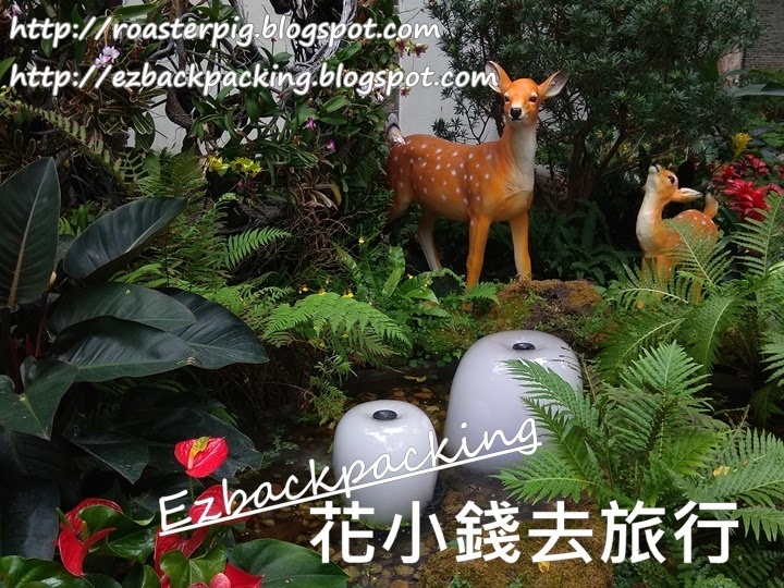 荃灣德華公園花展2021