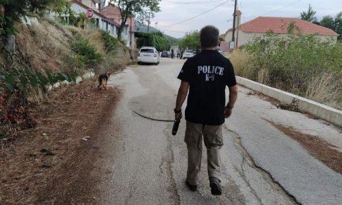 Προφυλακιστέος κρίθηκε με την σύμφωνη γνώμη ανακριτή και εισαγγελέα ο 48χρονος από την Μυρσίνη Πρέβεζας, ο οποίος είχε πυροβολήσει εναντίον του αδελφού του και ενός φίλου του.