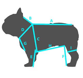 cães pesados