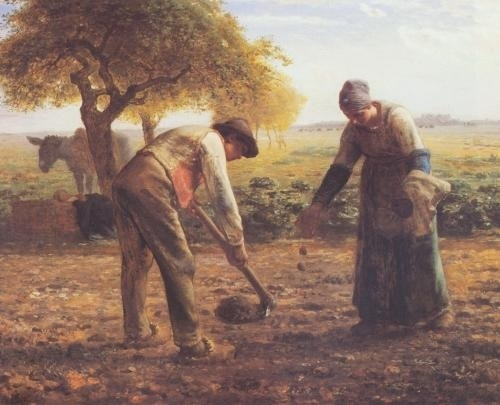 Evolutionists have difficulty making sense of humanity's history with agriculture.
