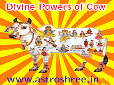 significance of cow in vedic astrology