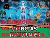 http://capitaneducacion.blogspot.com.es/search/label/6%C2%BA%20PRIMARIA%20-%20CIENCIAS%20DE%20LA%20NATURALEZA