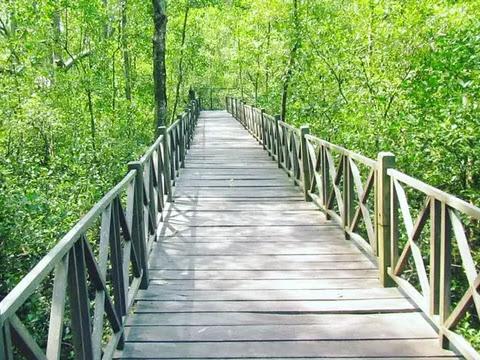 Destinasi Wisata Ibu Kota Baru di Kalimantan Timur
