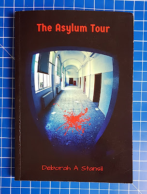 THe Asylum Tour by Deborah A Stansil Young Adult Fiction review