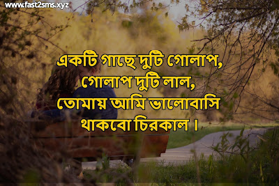 Romantic bengali poem images