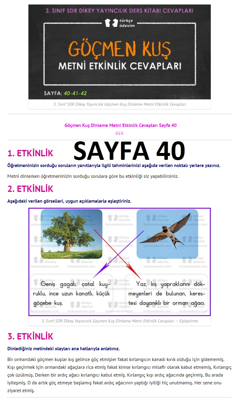 3. Sınıf Türkçe Çalışma Kitabı Cevapları Dikey Yayınları Sayfa 40
