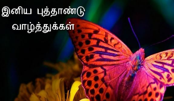 Advance Happy New Year 2017 Wishes in Tamil