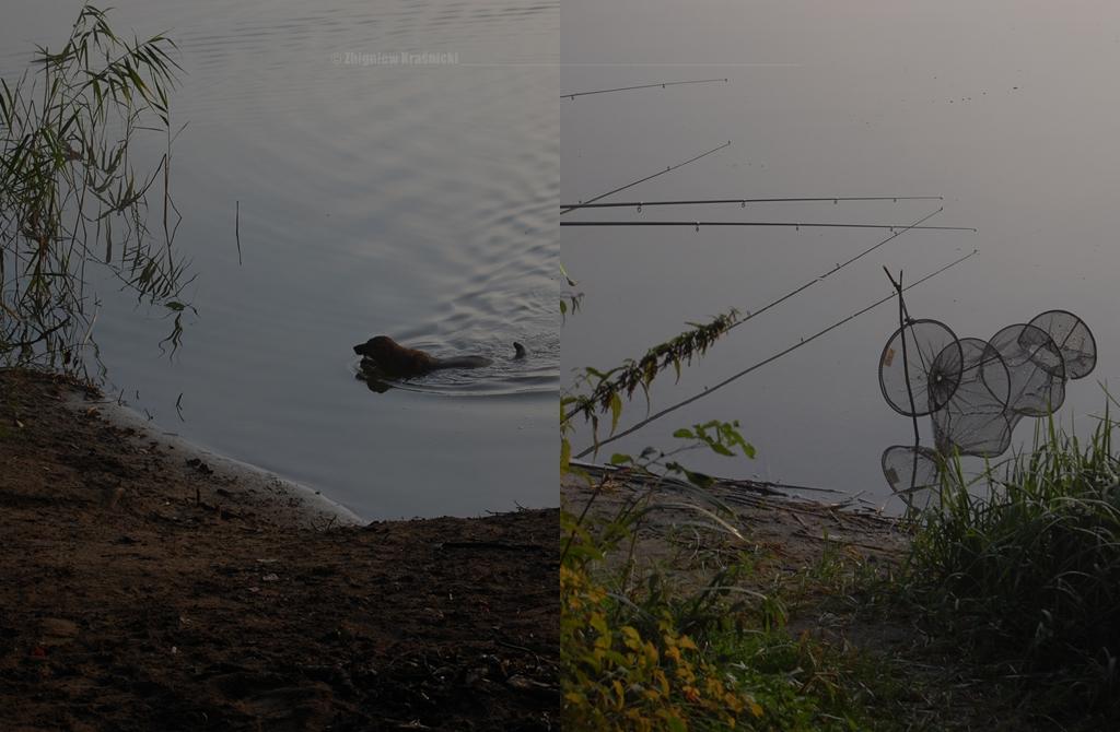 Olsztyn, jezioro Skanda o poranku