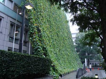 vegetacion arquitectura sostenible