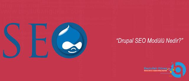 Drupal SEO Modülü Nedir