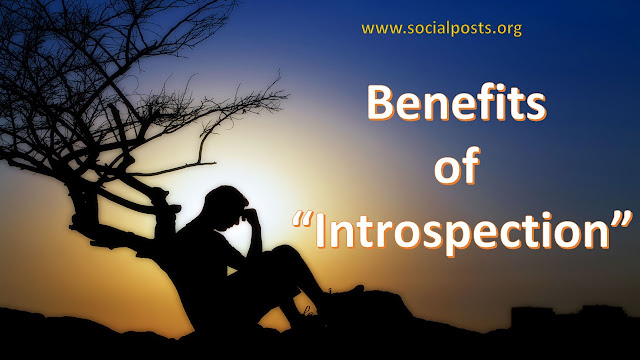 What is the meaning of introspection?