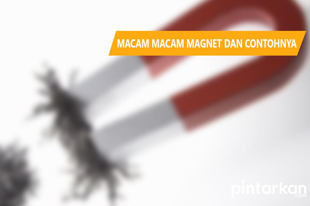 Macam Macam Magnet dan Contohnya
