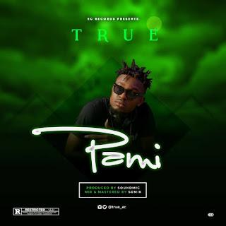 MUSIC: True - Pami