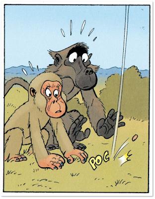 BABOON de Pau, edita Escapula comics - comic sin palabras animales