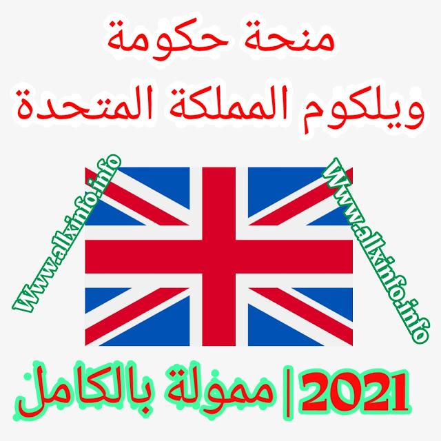 منحة حكومة ويلكوم المملكة المتحدة 2021 | ممول بالكامل