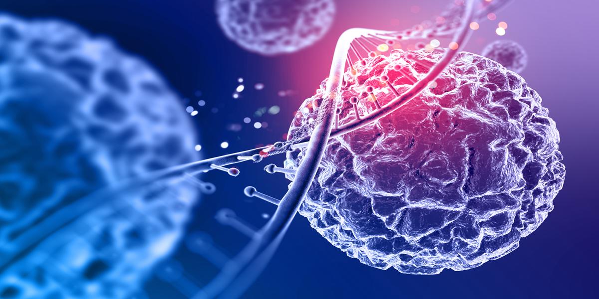 células,Investigaciones,embrionarias,regenerativa,científico