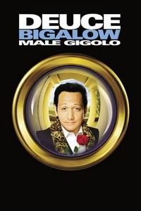 Gigolô por Acidente (1999) Dublado 720p