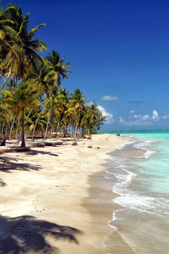 Praia de Maragogi  - AL