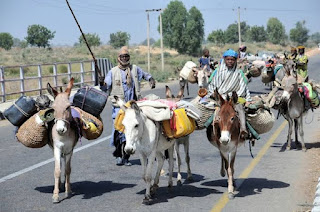Again, Bandits Abduct Over 300 Persons, Kill 4 In Zamfara Community.