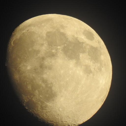 Moonsiting