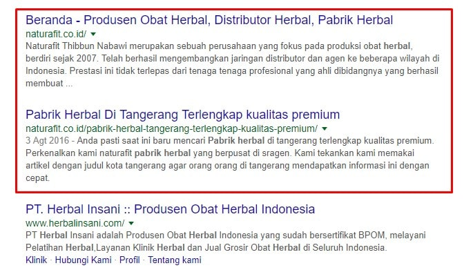 Jasa SEO Profesional | LOGIQUE Digital Indonesia Jasa Seo Terlengkap