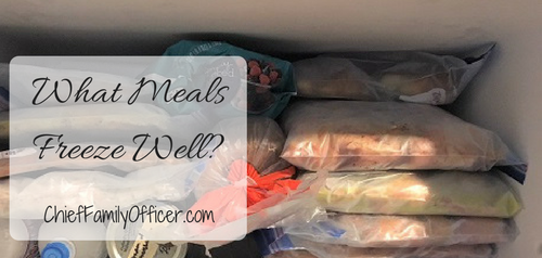 What Meals Freeze Well?
