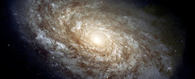 Something Is Killing Galaxies in The Most Extreme Regions of The Universe