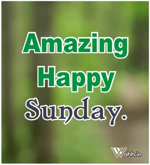 Amazing Happy Sunday.